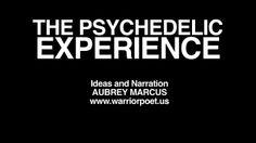 Great description of psychedelics @warriorpoetus Aubrey Marcus