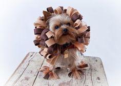 Costume  Costume di Halloween animali  cane leone PREORDER
