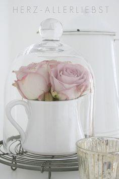 Pale Pink Roses in a Milk Jug under a Glass Cloche ♥ Source: Herz-Allerliebst
