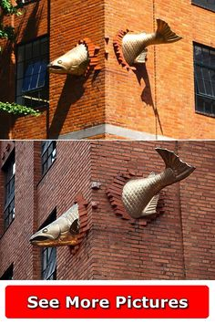 Portland Usa, More Pictures, Bird Feeders, Salmon, United States, Sculpture, Street, Outdoor Decor, Travel