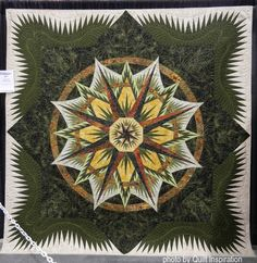 "Learning to Navigate, 94 x 89"",  by Barbara Henderson (Pinetop, Arizona), quilted by Pat Doro.  Mariner's Compass design by Judy Niemeyer.  Photo by Quilt Inspiration."