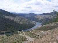 O Alto Douro Vinhateiro é uma zona particularmente representativa da paisagem que caracteriza a vasta Região Demarcada do Douro, a mais antiga região vitícola regulamentada do mundo.