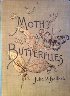 Moths and Butterflies by Julia P. Ballard - I will fill my cottage with beauties like this