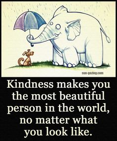 Kindness Makes You The Most Beautiful Person In The World No Matter What You Look Like