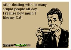 Make that catssss. Plural. I have 3.