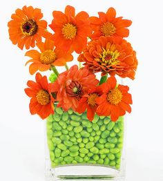 This cute, colorful idea brings the two-tone palette together perfectly.    What You'll Need 1 clear square vase, medium-size 1 small glass or sturdy plastic vase or cup that fits inside larger vase Green jelly beans Orange zinnias, gerberas, dahlias, or other flowers in your color palette Floral frog  Step 1 Place the small cup inside the medium vase and fill the gap between the two with jelly beans.    Step 2 Add water to the cup, and arrange the flowers inside. You might need to use a…