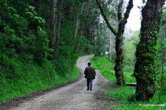 Outros/Há sempre um caminho que leva mais além......