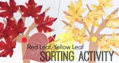 A fall sorting activity based on the book Red Leaf, Yellow Leaf by Lois Ehlert; fun math center for preschool, pre-k, and kindergarten