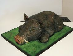 This Cake was for a hog hunter.  I had pictures...