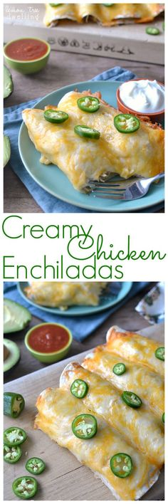 These Creamy Chicken Enchiladas are the BEST enchiladas ever! Easy to make ahead and even freeze, they are the perfect dinner for feeding a crowd....and sure to please!