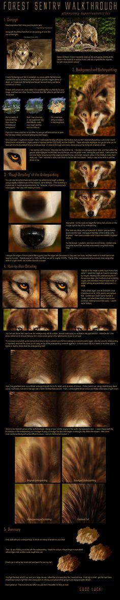 Realistic Fur Tutorial by =jocarra on deviantART ✤ || CHARACTER DESIGN REFERENCES | 解剖 •  علم التشريح • анатомия • 解剖学 • anatómia • एनाटॉमी • ανατομία • 해부 • Find more at https://www.facebook.com/CharacterDesignReferences & http://www.pinterest.com/characterdesigh if you're looking for: #anatomy #anatomie #anatomia #anatomía #anatomya #anatomija #anatoomia #anatomi #anatomija #animal #creature || ✤