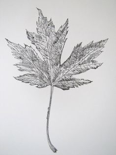 Autumn fall leaf by My Imagination In Ink