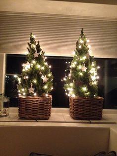 Kleine kerstboompjes