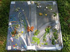 Outdoor Sticky Table Nature Collage