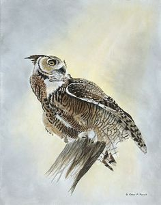 Sky Hunter-Great Horned OwlbyPatriciaMansell