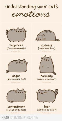 Pusheen Cat :3
