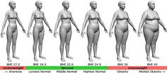 """Interesting site that formulates body fat, bmi, waist to height ratio, and lean body mass all in one. According to this my BMI is kg and says """"You do not need to lose weight"""" . Sport Fitness, Fitness Diet, Fitness Motivation, Health Fitness, Fitness Routines, Fitness Quotes, Bodybuilder, Reduce Weight, How To Lose Weight Fast"""