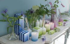 New Designers Guild fragrance collection