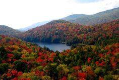 Adirondack Fall Lake