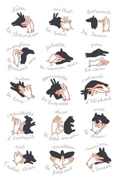hand shadows / shadow puppet show - illustration camille chauchat Shadow Art, Shadow Play, Diy For Kids, Cool Kids, Crafts For Kids, Shadow Puppets With Hands, Hand Shadows, Shadow Theatre, Puppet Show