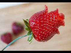 to Make a Strawberry Rose in 6 Steps How to make a strawberry rose. Watch and learn. Our latest DIY is so easy it only takes 6 quick steps.How to make a strawberry rose. Watch and learn. Our latest DIY is so easy it only takes 6 quick steps. Decoration Patisserie, Food Decoration, Cute Food, Good Food, Yummy Food, Deco Fruit, Strawberry Roses, Strawberry Recipes, Fruit Recipes