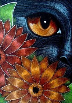 BLACK  CAT BEHIND THE RED ORANGE GERBER FLOWERS by Cyra R. Cancel