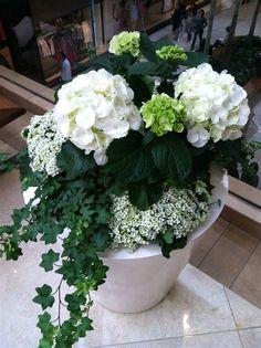 Fabulous Modern Backyard Garden Stairs Ideas - New ideas Container Flowers, Container Plants, Container Gardening, Vegetable Gardening, Succulent Containers, Fine Gardening, Gardening Tools, Gardening Gloves, Small Yard Flower Garden Ideas