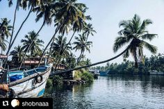 #Repost @shobnaaa with @repostapp  Follow back for travel inspiration and tag your post with #talestreet to get featured.  Join our community of travelers and share your travel experiences with fellow travelers attalestreet.com  Azhapulla (Alleppy)  #kerala #keralatourism #KeralaAttraction #incredibleindia #travelindia #TravelGramIndia #india #vsco #vscotravel #vscogrid #coconut #coconuttree #aleppy #twitter