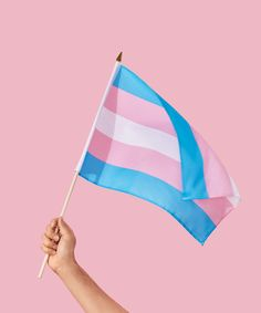 The History Of The Transgender Pride Flag+#refinery29