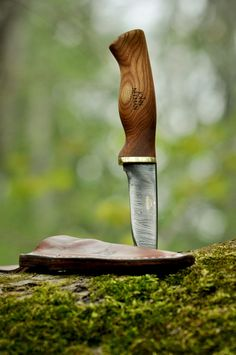Knife with beautiful wooden handle