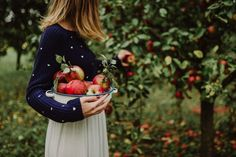 Food photography by Sonja Lazukic #autumn #apple