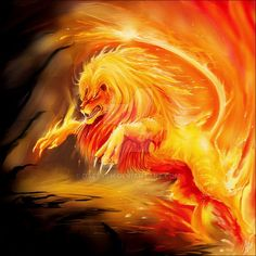 Lion on fire Mythical Creatures Art, Fantasy Creatures, Lion Live Wallpaper, Fire Lion, Lion Drawing, Beautiful Lion, Flame Art, Lion Pictures, Tiger Art