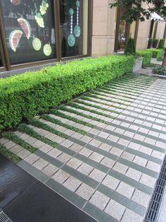 .modern paving landscape