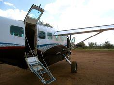 DayTreasure: Royal Madikwe - Madikwe Game Reserve Game Reserve, Places Ive Been, Games, Travel, Gaming, Toys