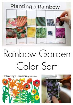 Planting a Rainbow Color Sort Rainbow garden color sort activity for preschool Preschool Garden, Preschool Lesson Plans, Preschool Science, Preschool Crafts, Preschool Themes By Month, Seeds Preschool, Preschool Curriculum, Preschool Printables, Fun Crafts
