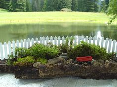 this is such an adorable little fairy garden