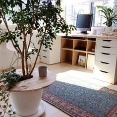 無印良品/IKEA/トルコ絨毯/シルクジャスミン/ittala/マルトク…などのインテリア実例 - 2015-05-13 08:21:05 | RoomClip(ルームクリップ)