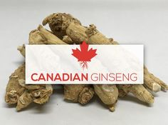 Canadian Ginseng Giftworks Place Cards, Place Card Holders, Health, Salud, Health Care, Healthy