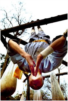 shaolin kungfu and lifestyle   Martial arts isn't just a weapon it's also a lifeline of what you could accomplish in life if you use it right. -Nichelle French