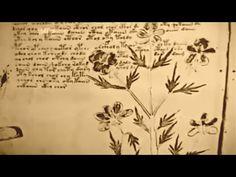The Voynich Manuscript - YouTube