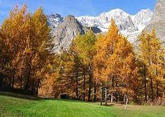 Scopri i colori dell'autunno in Valle d'Aosta, ecco i luoghi da non perdere