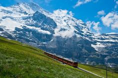 Switzerland, The Alps.RODE A TRAIN LIKE THAT THROUGH THE ALPS--AWESOME !!!!!