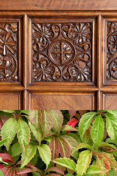 Als arrimadors de la sala de confiança trobem representats en relleu éssers fantasiosos i plantes com la vinya verge. Decorative Boxes, Home Decor, Spring, Plant, Decoration Home, Room Decor, Home Interior Design, Decorative Storage Boxes, Home Decoration