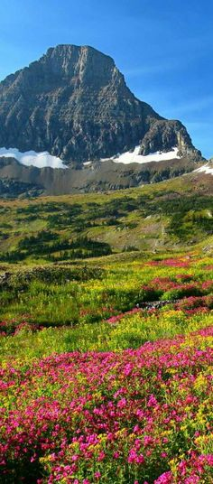 Reynolds Mountain at the Glacier National Park, Montana. Places Around The World, Oh The Places You'll Go, Places To Travel, Places To Visit, Around The Worlds, Beautiful Sites, Beautiful World, Beautiful Places, Glacier National Park Montana