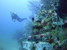 Underwater horror home