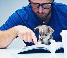 The benefits of reading to shelter dogs Baby Animals, Funny Animals, Cute Animals, Funny Animal Pictures, Cute Pictures, Dog Pictures, Cute Puppies, Dogs And Puppies, Cover Art