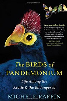 "The Birds of Pandemonium by Michele Raffin  ""As Heard On NPR.../' sounds like one of those 'must read' books of the week. Real interesting!"