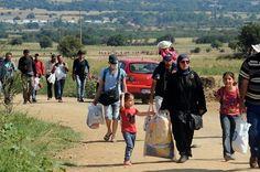 Bild zu Flüchtlingskrise Europa