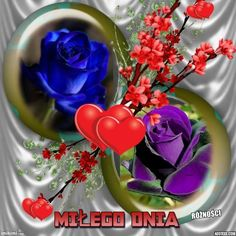 Beautiful Roses, Good Morning, Table Decorations, Plants, Album, Buen Dia, Bonjour, Plant, Good Morning Wishes