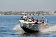 Fast thrills no hills with a 60 min Eco tour Swan river, narration tour and spot dolphins . great value based at Elizabeth Quay Wild West, Perth, West Australia, Us Travel, Places To Travel, Cruisers, Westerns, Kings Park, Rock Legends